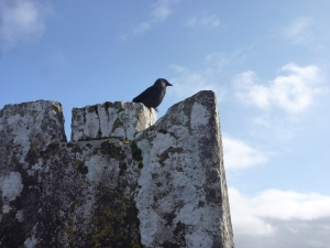 Battlements, Blarney Castle