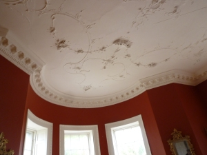 Stucco Ceiling, Belvedere House