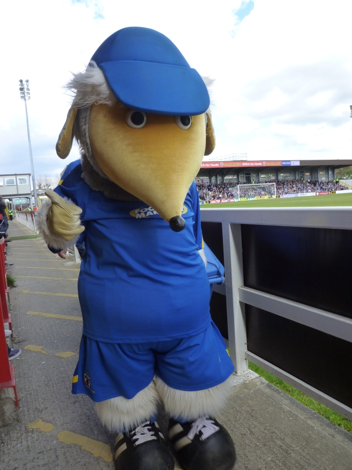 Mascot Haydon the Womble