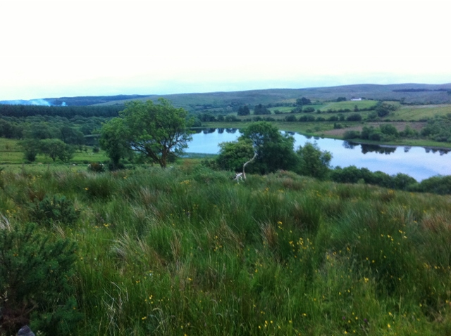 Lough More, Cullamore on Tyrone/Monaghan border