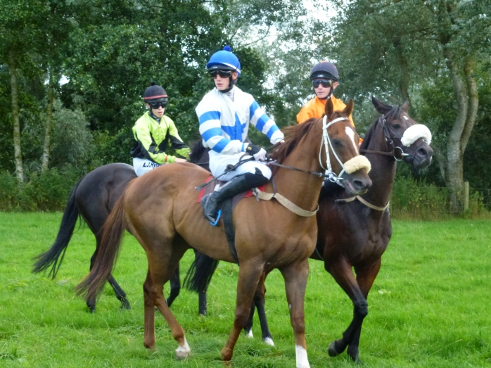 Ready for the Off at Aughnacloy Races Photo: © Michael Fisher