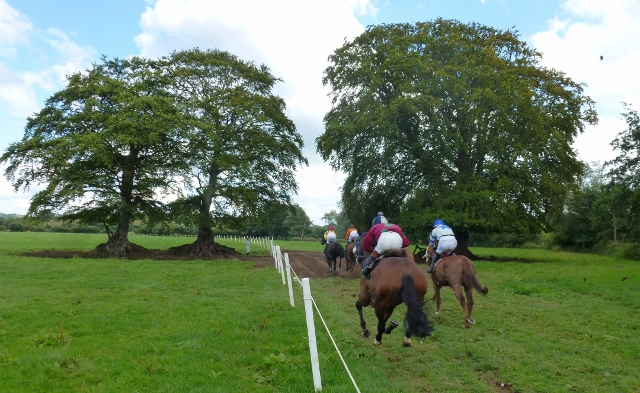 Aughnacloy Races at Ravella Photo: © Michael Fisher