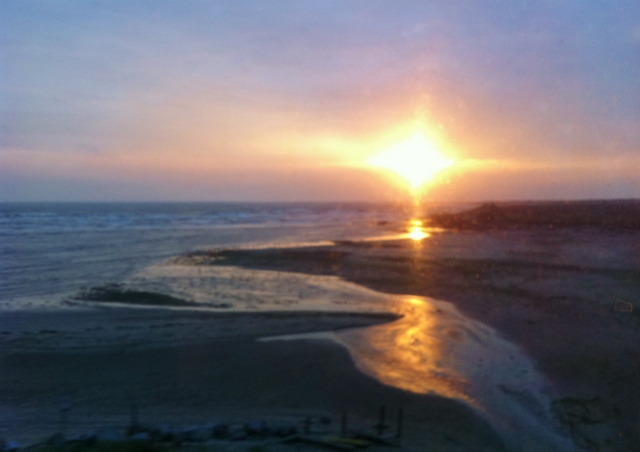 View of beach near Gormanston Co.Meath from train window Photo: © Michael Fisher