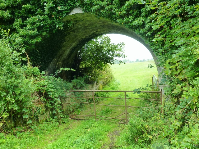 Old Bridge over Ulster Canal near Clones, Co.Monaghan Photo: ©  Michael Fisher