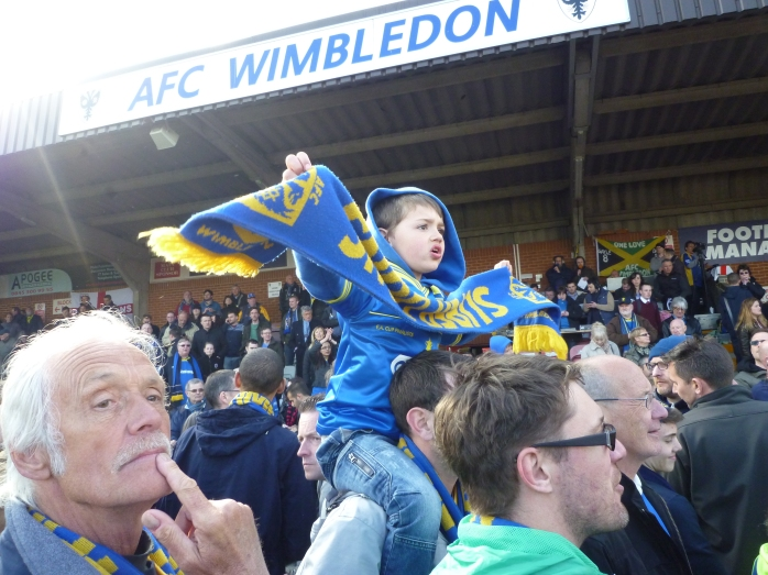 AFC Wimbledon at Kingsmeadow, Norbiton Photo: © Michael Fisher