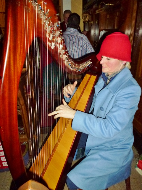 Harpist Liz McGuinness  Photo:  © Michael Fisher