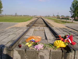 Rail tracks at Birkenau camp Photo:  © Michael Fisher