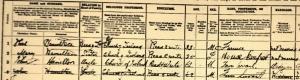 Close-up 1901 Census Ballinode: Thomas, Mary and John Hamilton