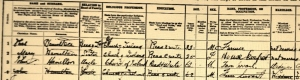 Close-up 1901 Census Ballinode: Thomas, Mary and John Hamilton