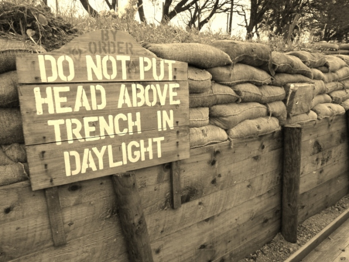 Trench display Cavan County Museum, Ballyjamesduff Photo:  © Michael Fisher
