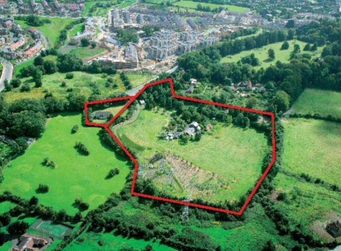 Fernhill Gardens site Photo: Colliers/daft.ie