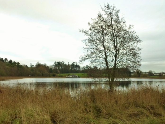 Round Lake Fivemiletown  Photo:  © Michael Fisher