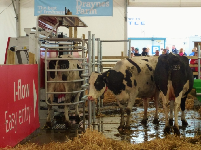 Lely robotic milking machine display at Balmoral Show Photo:  © Michael Fisher