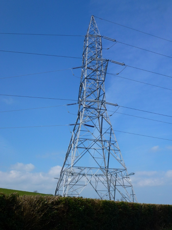 EirGrid pylon in County Louth  Photo:  © Michael Fisher